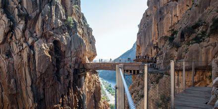 Den eventyrlystne kan vandre på Caminito del Rey utenfor Malaga.