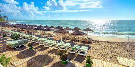 Benalmadena i Malaga er et badested med en lang sandstrand.
