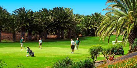 Området har en fin golfbane