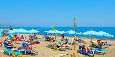 Stranden ved Costas & Christina i Platanias