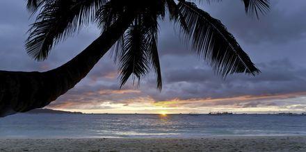 Nyt solnedgangen fra stranden på Cozumel