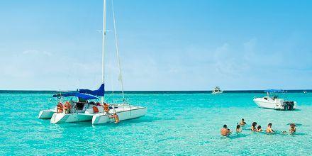 Flotte muligheter for snorkling rundt Cozumel