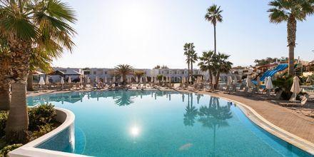 Creta Princess Aquapark & Spa – sommer 2021