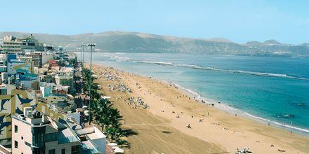Utsikt til Las Canteras
