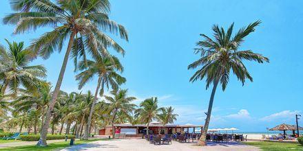 Restauranten Dolphine Beach