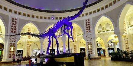 Shoppingsenteret Dubai Mall