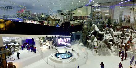 Ski Dubai i Mall of the Emirates i Dubai