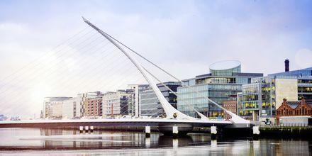 Samuel Beckett Bridge over elven Liffey i Dublin.