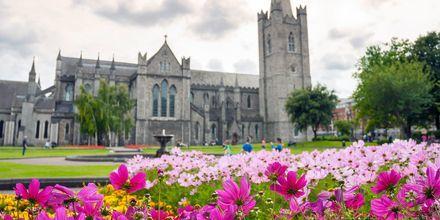 En kjent severdighet i Dublin – Saint Patrick's Cathedral.