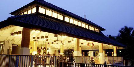 Restaurant Geckos