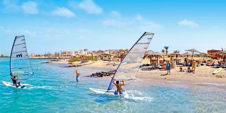 På surfebrett langs stranden i El Gouna