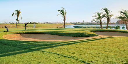 Steigenbergers 18-hulls golfbane