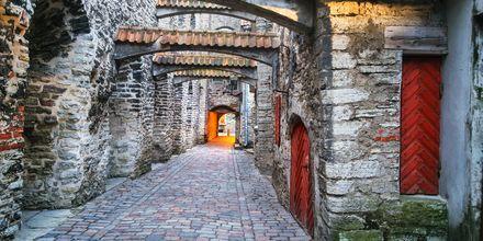 Katariina käik – gate fra middelalderen i Tallinn, Estland.