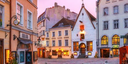Morgengry i Tallinn, Estland.