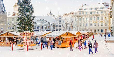 Julemarked på Rådhustorget i Tallinn, Estland.