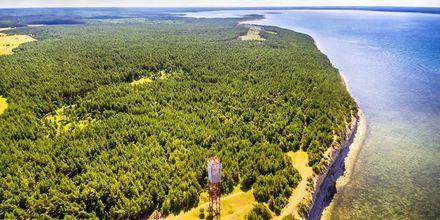 Saarema Island på Estland.