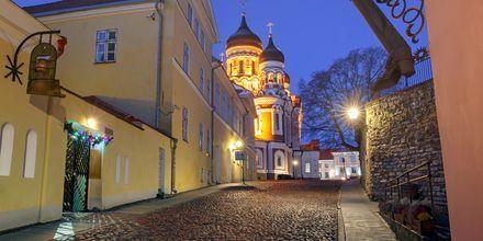 Gamlebyen i Tallinn, Estland.
