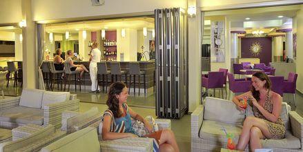 Bar på EuroNapa i Ayia Napa, Kypros