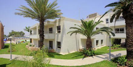 Velkommen til EuroNapa i Ayia Napa, Kypros
