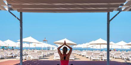 Gratis yoga på hotellet