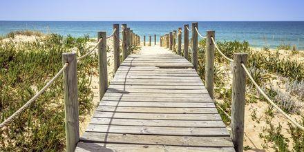 Strand i Faro, Portugal