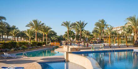 Bassengområdet på Fort Arabesque Resort, Spa & Villas