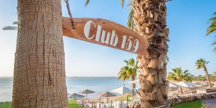 Baren Club 159