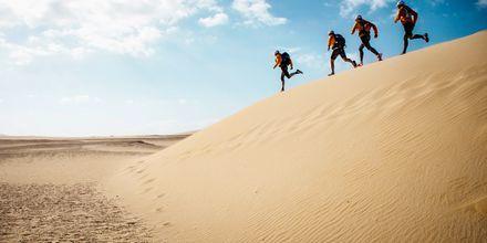 Løping i sanddynene