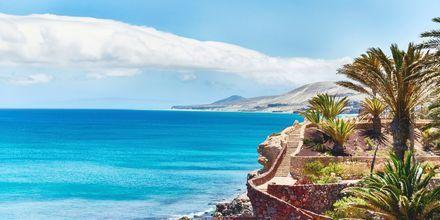 Fuerteventuras vakre kyst