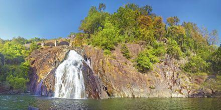 Dudshagar Falls
