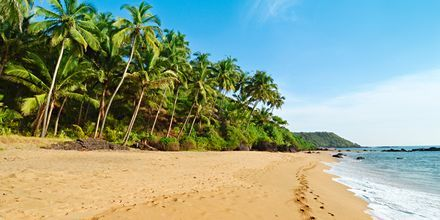 Strand i Goa