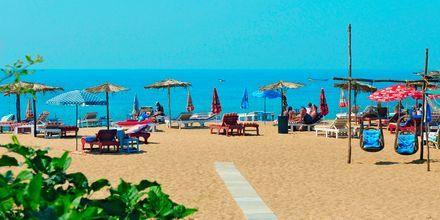 Stranden ved Goan Heritage
