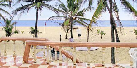 Stranden ved Golden Star Beach i Negombo