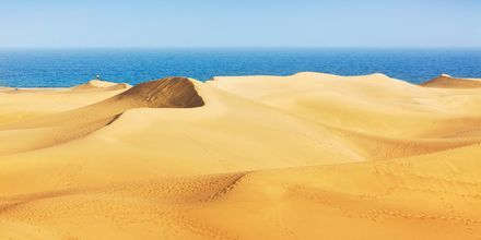 Sanddynene i Maspalomas