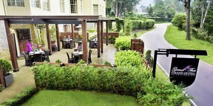 Fra utsiden av Grand Thai på hotellet