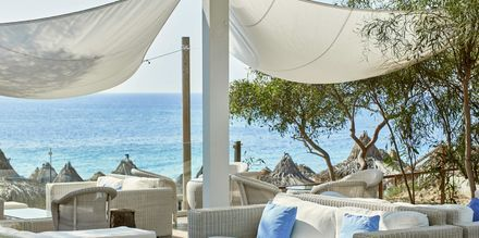 Loungebar på hotell Grecian Bay, Kypros