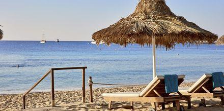 Stranden på hotell Grecian Bay, Kypros