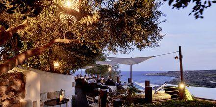 Bar på hotell Grecian Park, Kypros.