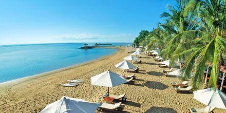 Stranden ved Griya Santrian