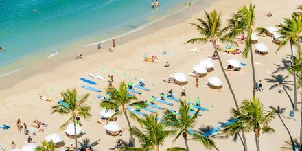 Waikiki Beach i Honolulu på Hawaii.
