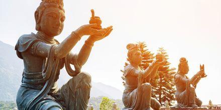 Statuer som tilber Tian Tan Buddah.