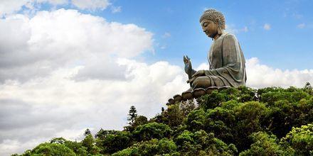 Tian Tan Buddha er en av verdens største Buddaher og ligger på Lantau Island.