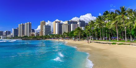 Stranden i Honolulu – Waikiki – og Honolulus skyline.