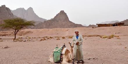 Ørkenlandskap i Hurghada