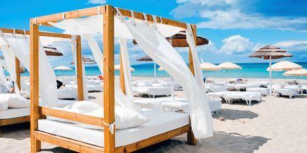 Ibiza er kjent for sine vakre strender, bra natteliv og innbydende hav.
