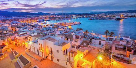 Havnen på Ibiza i solnedgang.
