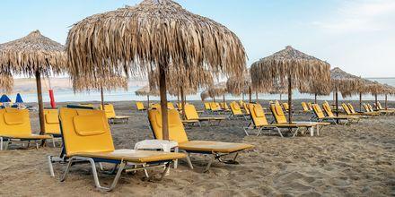 Ideal Beach