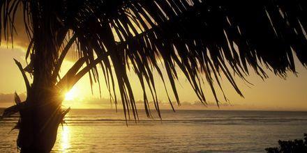 Solnedgang på La Réunion.