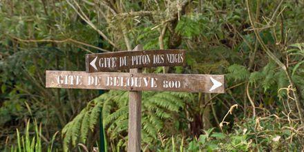 Flotte turmuligheter på La Réunion.