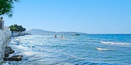 Strandliv på Zakynthos